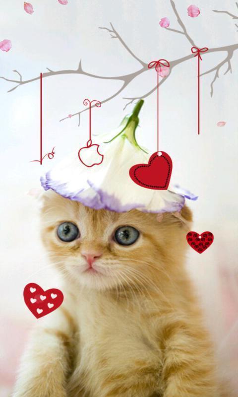 喵星人是由绿豆动态壁纸diy出品的一款可爱猫咪动态壁纸