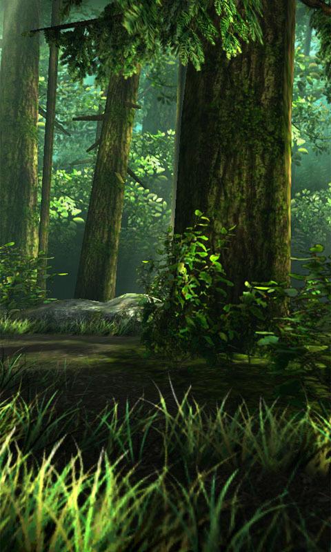 迷幻森林-3d动态壁纸